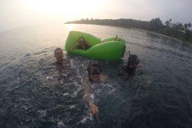 Open Trip Ujung Kulon